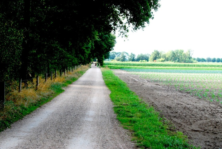 Grensweg01